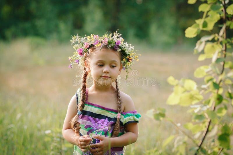 Wenig Mädchen in einem Kranz von wilden Blumen im Sommer lizenzfreie stockfotos