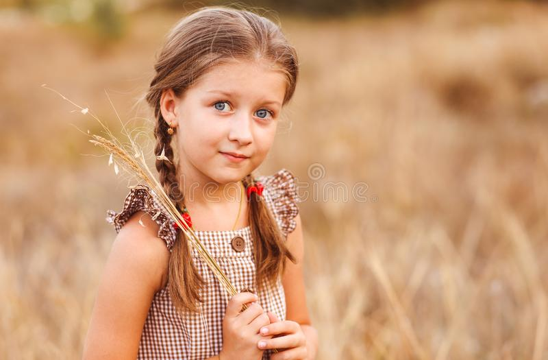 Wenig Mädchen mit großen Augen auf einem Weizenfeld, das Krautblumenstrauß hält stockfotos