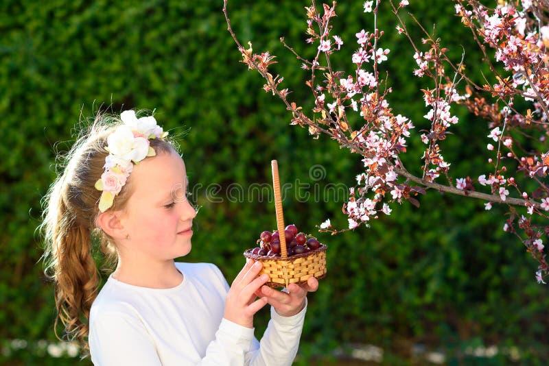 Wenig M?dchen mit Korb der ersten Traubenfr?chte w?hrend des j?dischen Feiertags, Shavuot in Israel stockbild