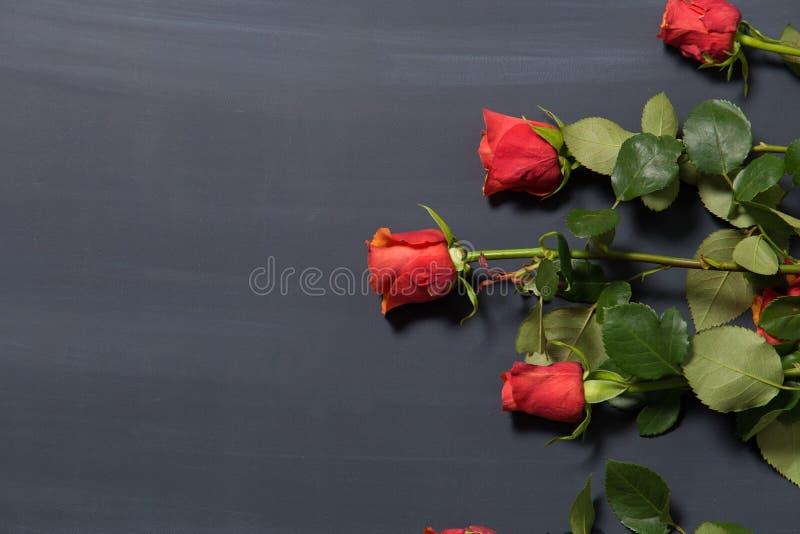 Wenig orange und rote Rose blüht auf dunkler chalcboard Oberfläche Blumenstrauß auf einem Unschärfezusammenfassungshintergrund mi stockbild