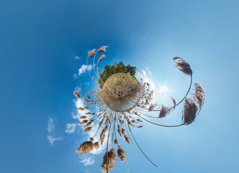 Wenig Planet Umwandlung mit Biegung des Raumes Kugelförmiges Luft-Panorama mit 360 Ansichten auf dem Ufer von See mit Dickichten  lizenzfreies stockbild