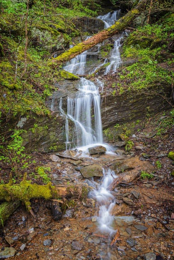 Wenig rauchiger Gebirgswasserfall im Frühjahr lizenzfreies stockfoto