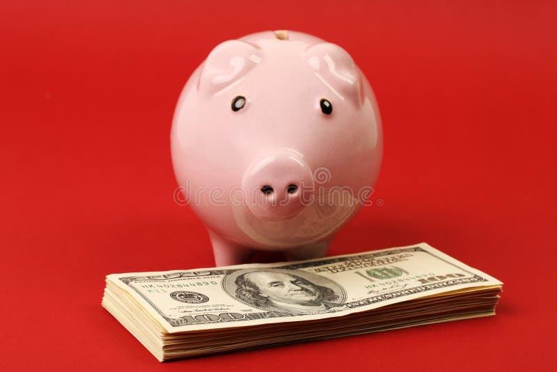 Wenig rosa Sparschwein, das auf Stapel des Geldamerikaners hundert Dollarscheine auf rotem Hintergrund steht stockbilder