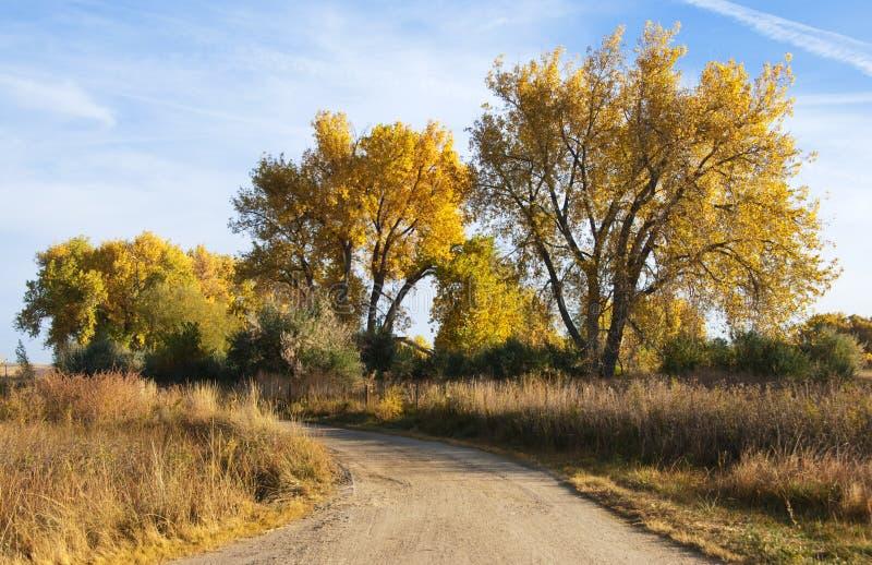 Wenig Straße auf dem Kolorado-Grasland stockfotos