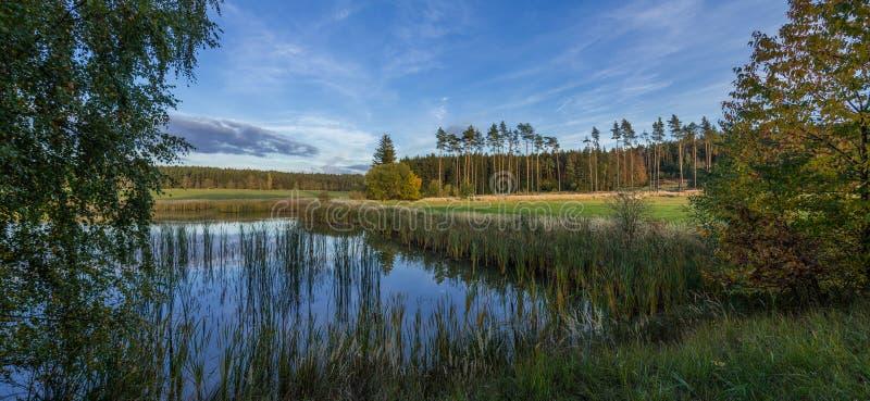 Wenig Teich mit Bäumen und Wiese lizenzfreie stockfotografie