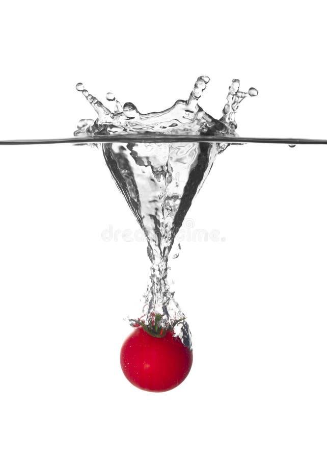 Wenig Tomatespritzen im Wasser stockbild