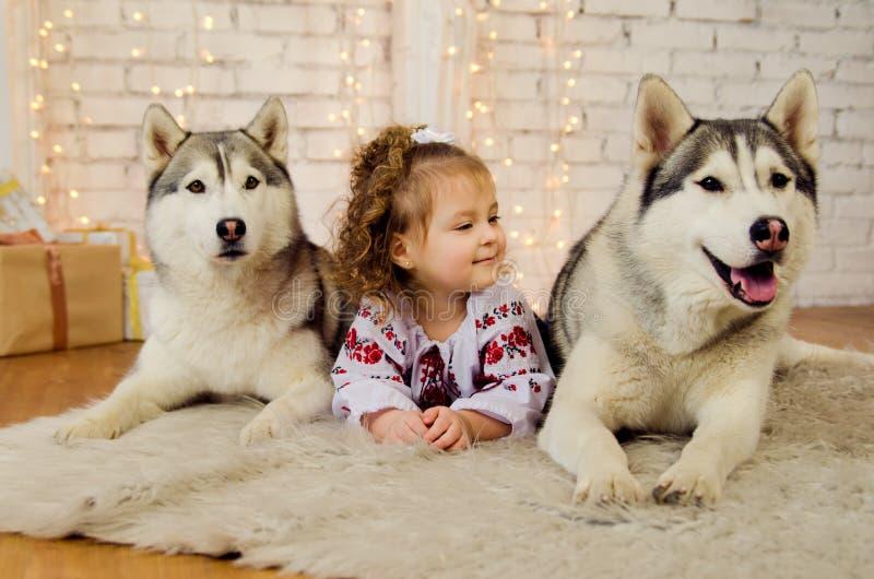 Wenig ukrainisch mit zwei Hunden heiser lizenzfreie stockbilder