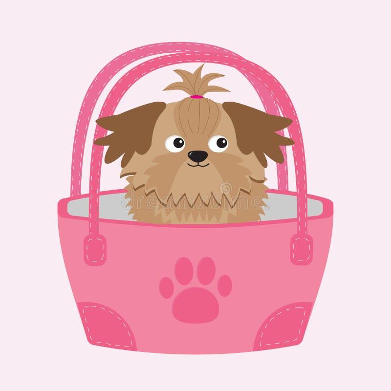 Wenig Zaubersonnenbräune Shih Tzu-Hund in der Tasche stock abbildung
