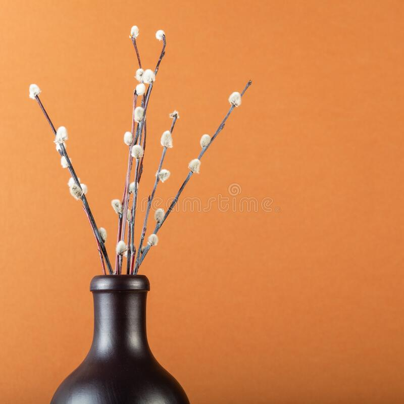 Wenige pussy-willow Zweige in einer Keramikflasche auf braunem Boden lizenzfreies stockbild