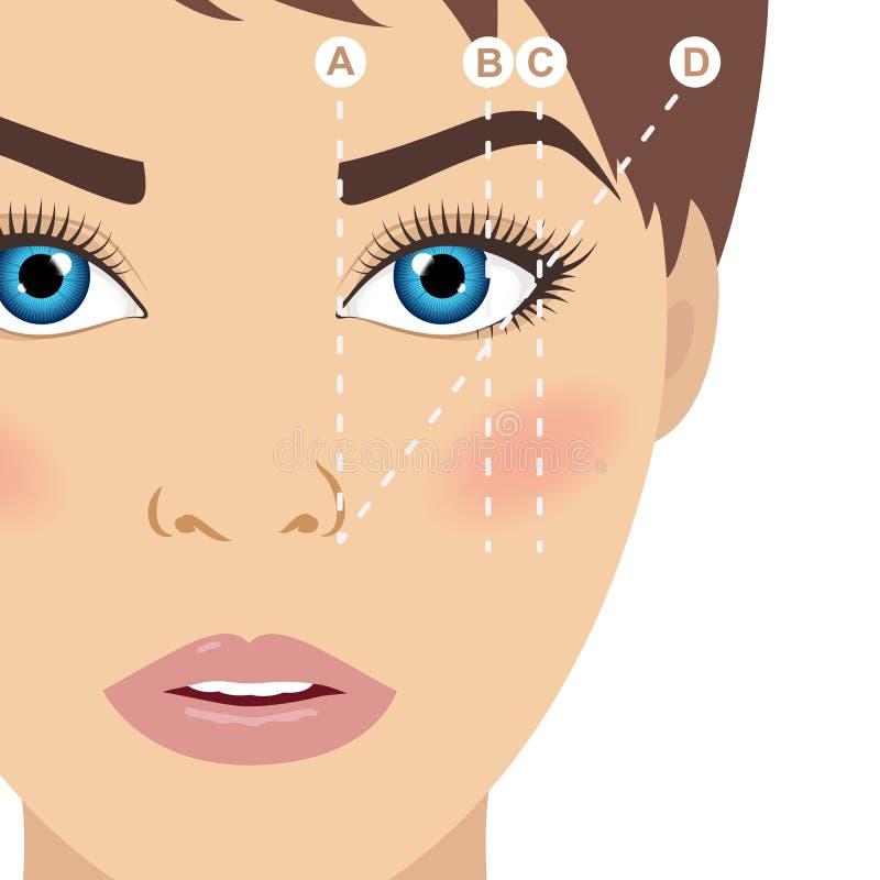 Wenkbrauwregeling trimming Hoe te om uw wenkbrauwen te vormen Zieke vector vector illustratie
