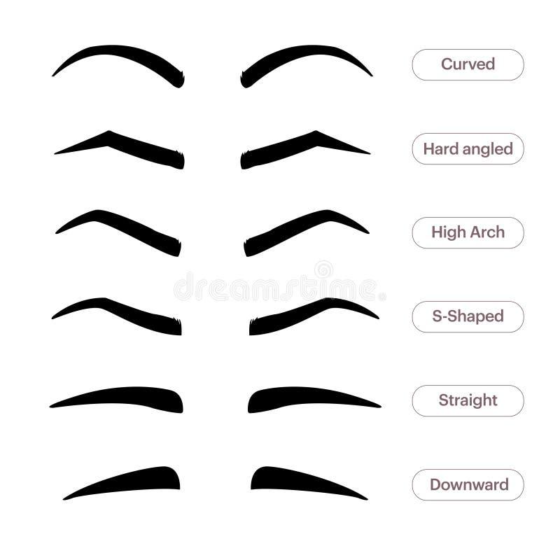 Wenkbrauwvormen Diverse types van wenkbrauwen Klassiek type en andere trimming Vectorillustratie met verschillend vector illustratie