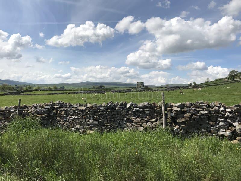 Wensleydale Йоркшир стоковое изображение rf