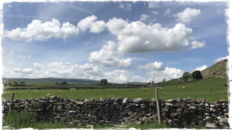 Wensleydale Йоркшир стоковая фотография
