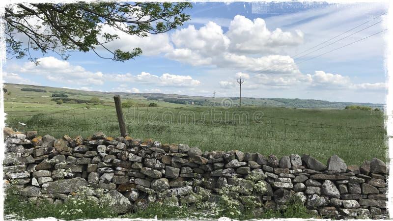 Wensleydale Yorkshire arkivbild