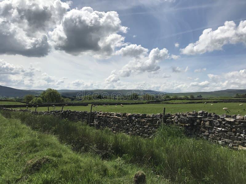 Wensleydale Yorkshire imágenes de archivo libres de regalías