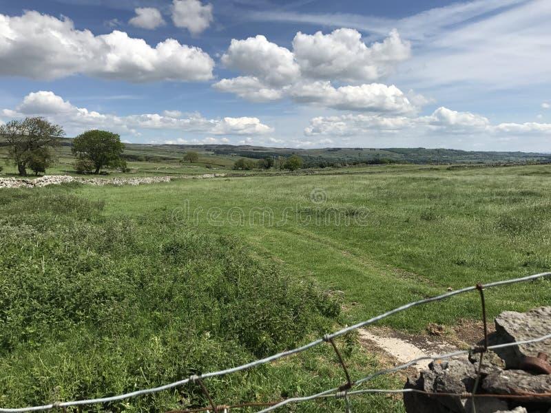 Wensleydale Yorkshire arkivfoton