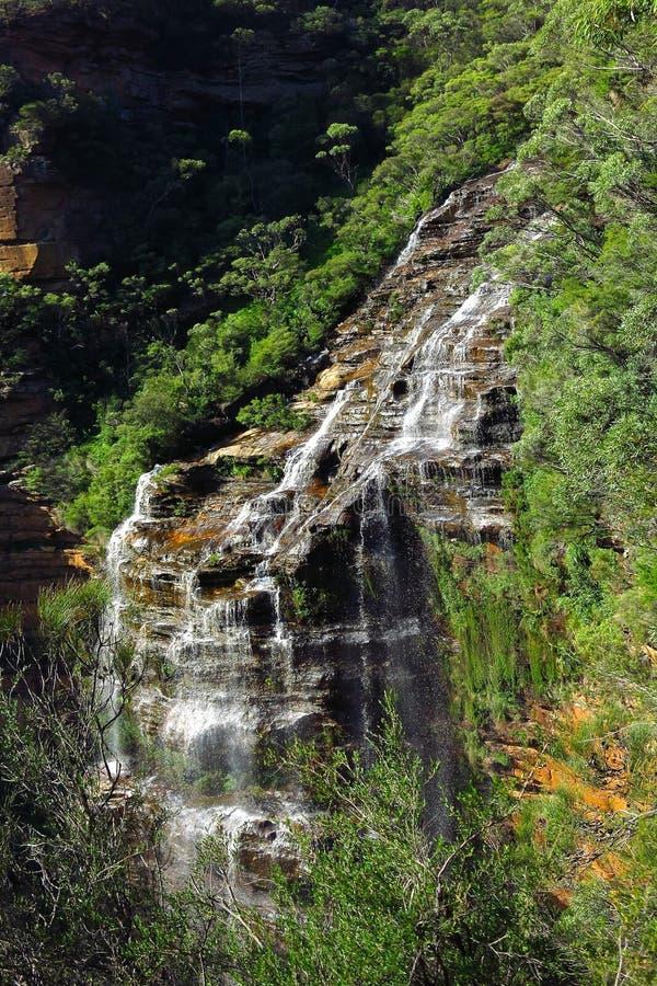 Wentworth падает, голубой национальный парк гор, NSW, Австралия стоковое изображение rf
