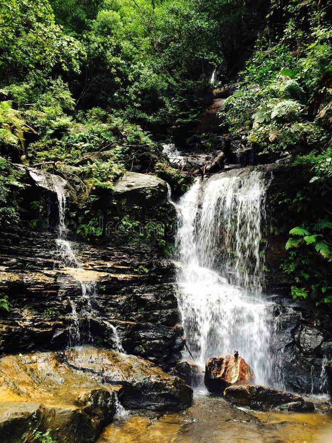 Wentworth Falls lizenzfreies stockfoto