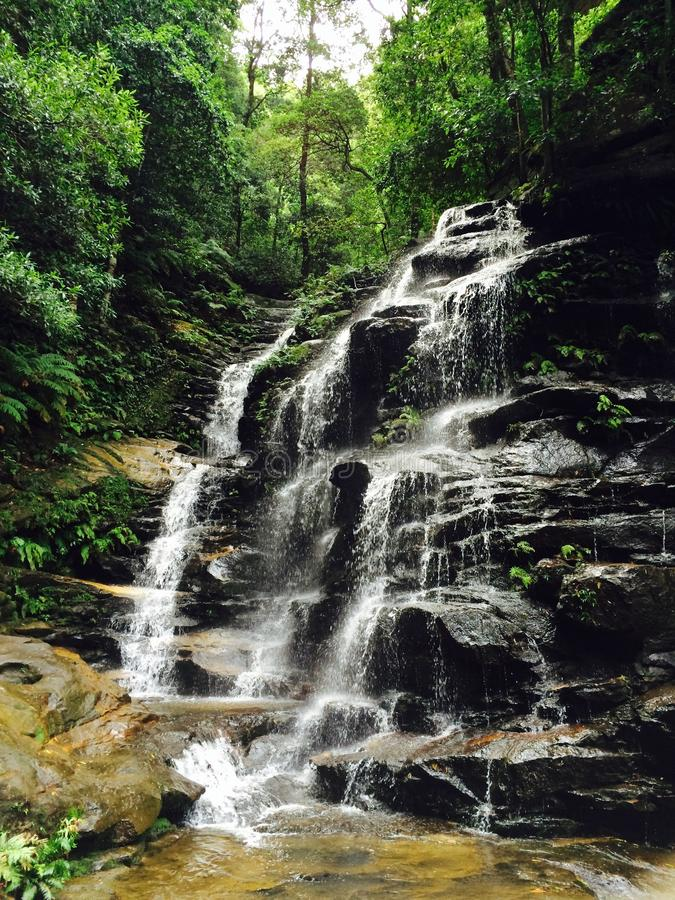 Wentworth Falls stockbild