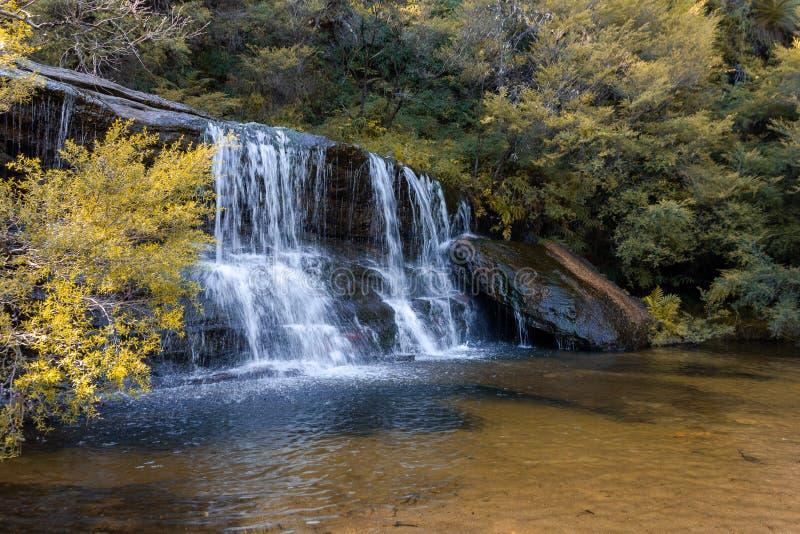 Wentworth Falls aux montagnes bleues photographie stock