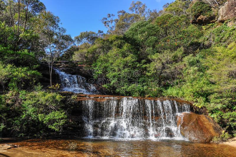 Wentworth Falls i blåa berg, Australien arkivbild