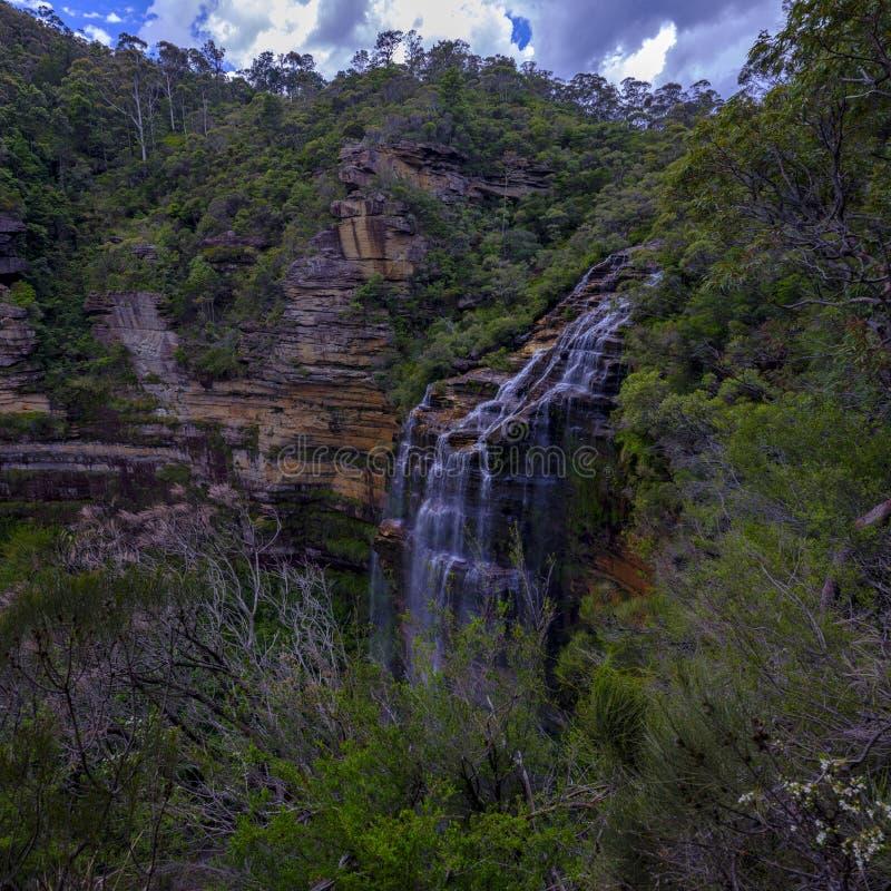 Wentworth Falls i de bl?a bergen, NSW, Australien royaltyfri fotografi