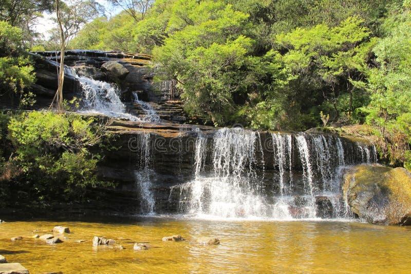Wentworth tombe, le parc national de montagnes bleues, NSW, Australie images stock