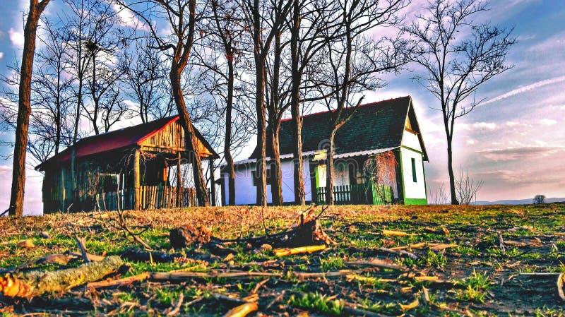 werehouse photo libre de droits