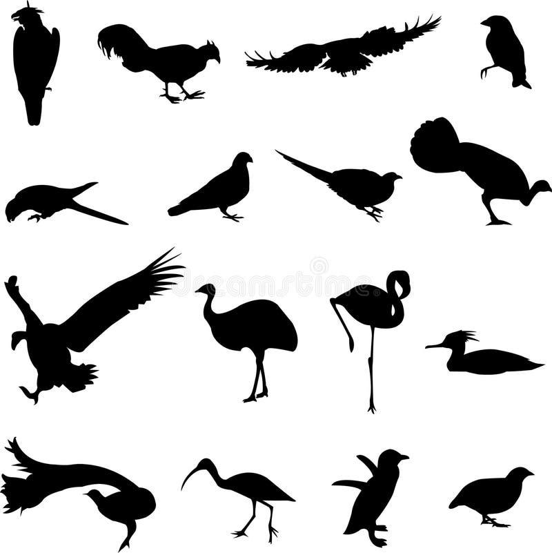 Wereld-beroemde vogel vector illustratie