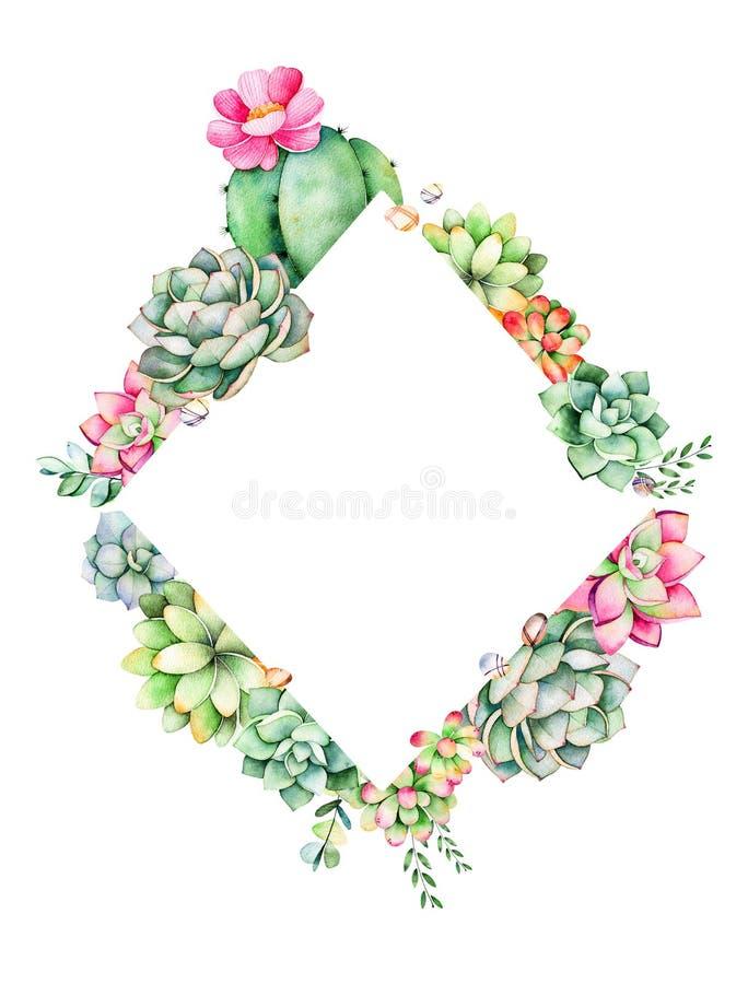 Wereld van succulents en cactusinzameling stock illustratie
