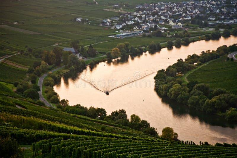 Wereldberoemde bochtigheid bij de rivier Moezel dichtbij Trittenheim met stock foto's