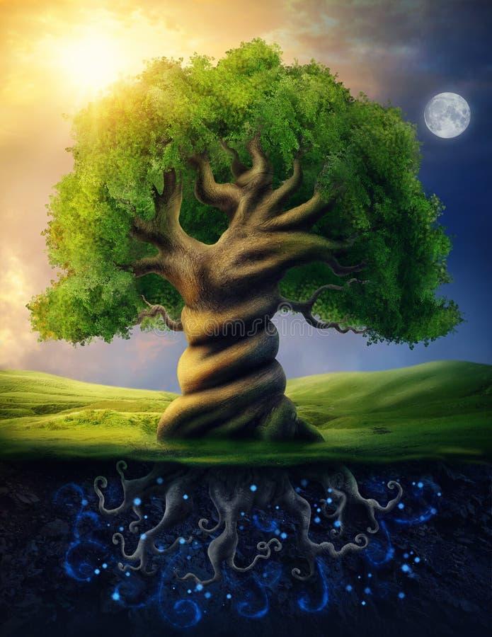 Wereldboom royalty-vrije illustratie