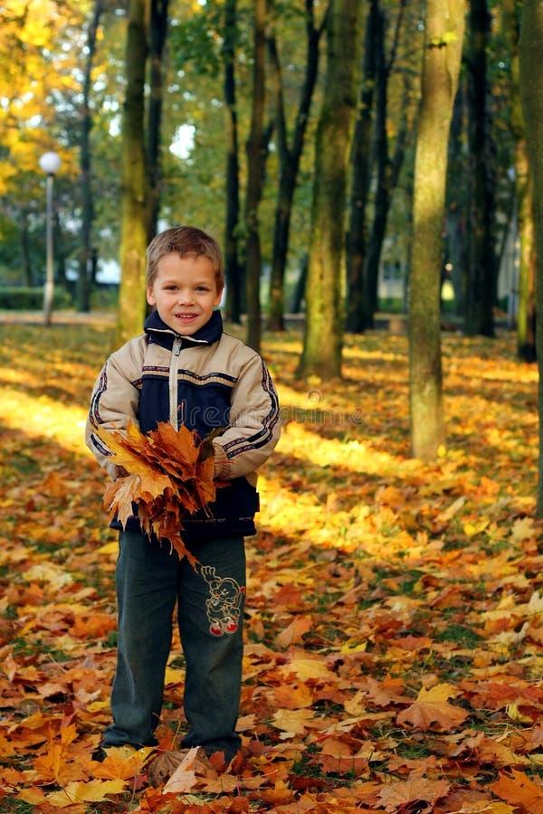 Werfende Herbstblätter des Kindes stockfotos