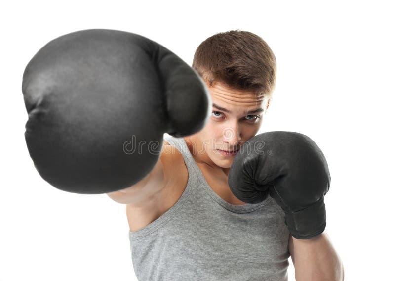 Werfender Durchschlag des jungen Boxers an der Kamera lizenzfreie stockfotos