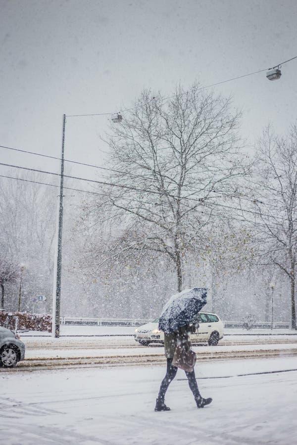 Werkelijk koude en sneeuwdagen in Amsterdam stock foto