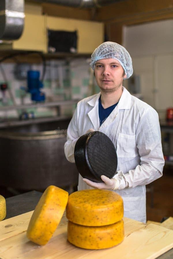 Werkend bij de productie van kaas bij zuivelfabriek, met kazen royalty-vrije stock afbeeldingen
