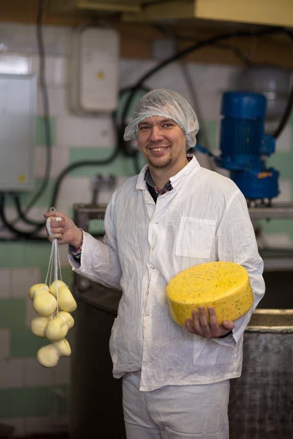 Werkend bij de productie van kaas bij zuivelfabriek, met kazen stock foto