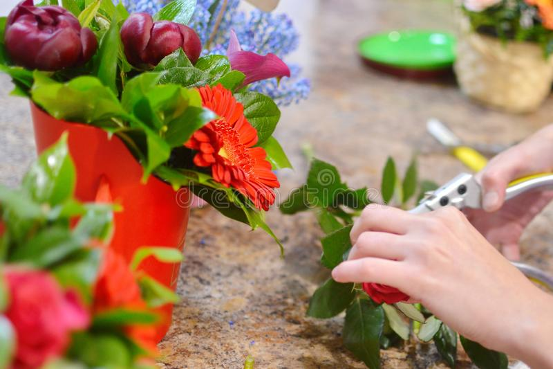 Werkend hulpmiddel van de bloemist in de bloemwinkel royalty-vrije stock foto's