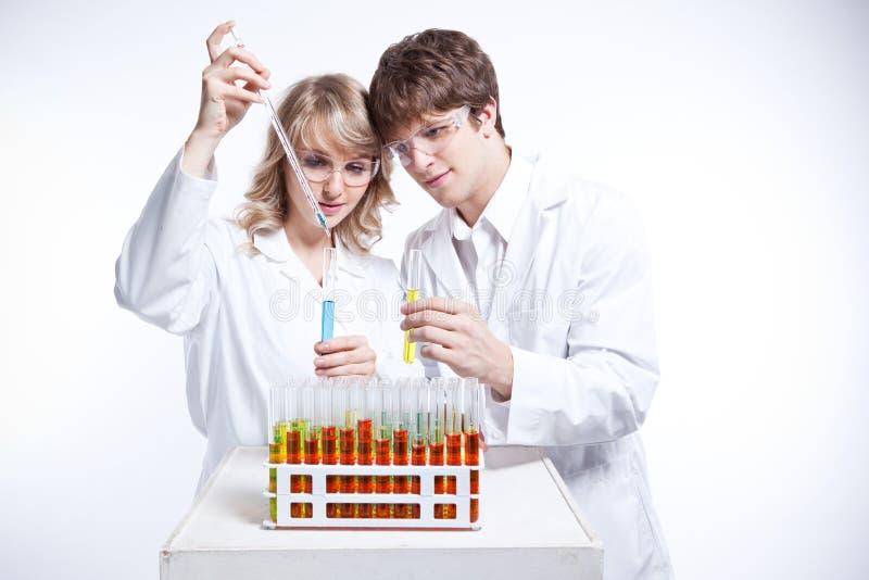 Werkende wetenschappers stock foto