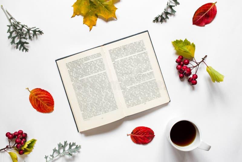 werkruimte Samenstelling van handboek, een kop thee, de herfstbladeren, rode bessen van hagedoorn op witte achtergrond stock afbeelding