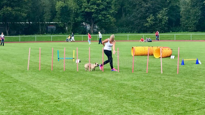 Female dog trainer commands pup dog. Wernau, Germany - September 03, 2017: Female dog trainer commands pup dog at training during a pup dog festival royalty free stock image