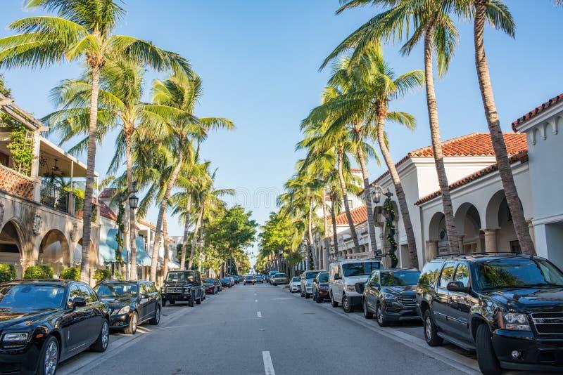 Wert Allee im luxuriösen Palm Beach, Florida lizenzfreie stockfotos