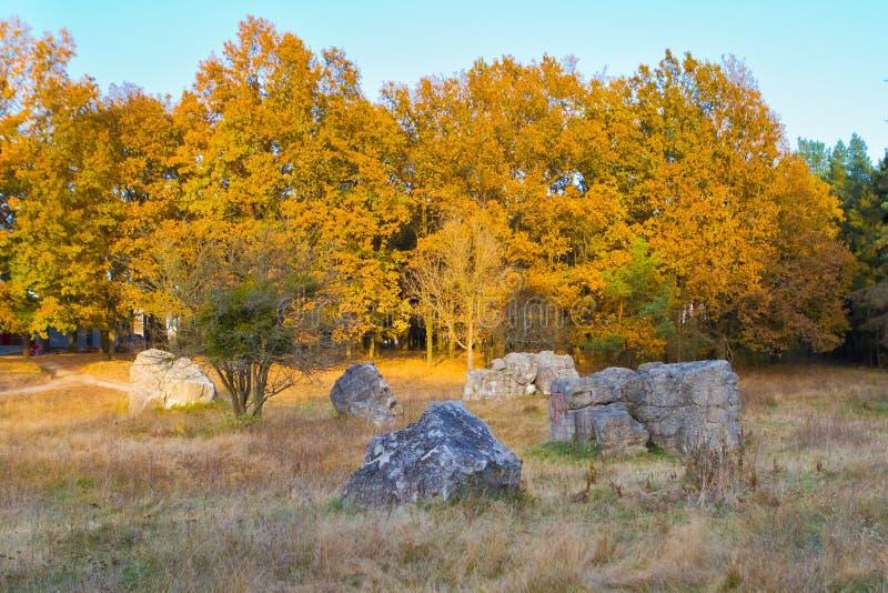 Werwolf, ruiny Hitler ` s wybuchu odporny betonowy bunkier lokuje, wielcy kawałki beton, nasłoneczneni drzewa, jesieni fotografia fotografia royalty free