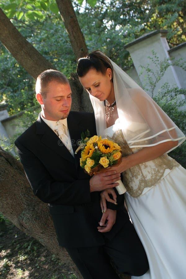 weselne młodych par zdjęcia royalty free