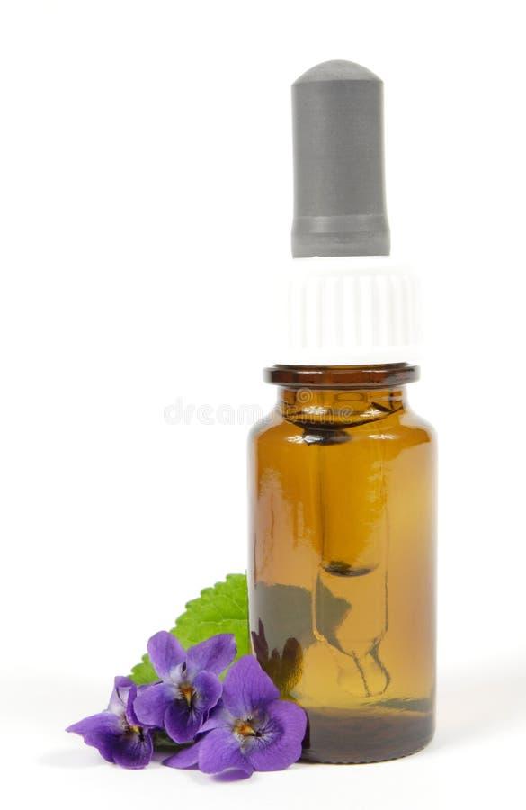 Wesentliches Schmieröl der Viola stockbild