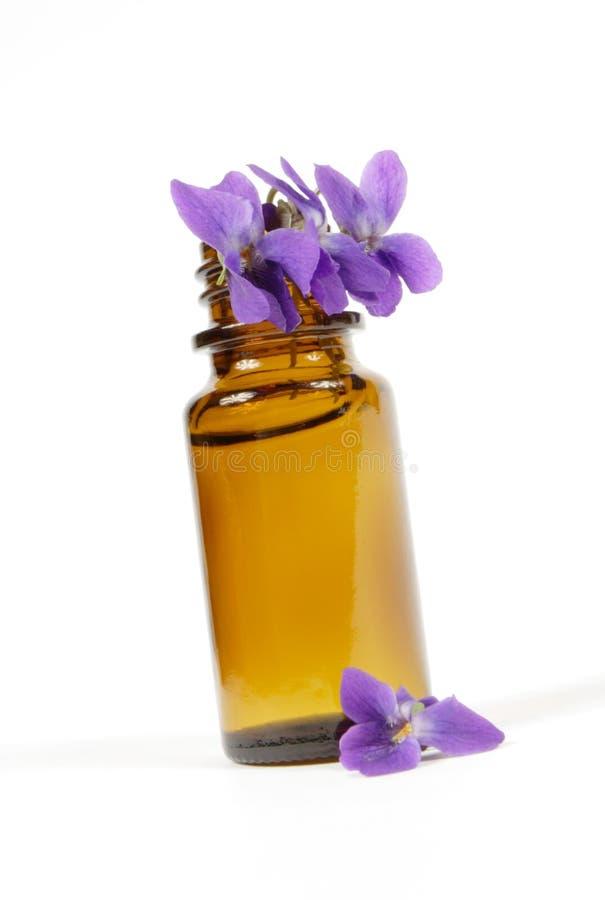 Wesentliches Schmieröl der Viola lizenzfreie stockfotos