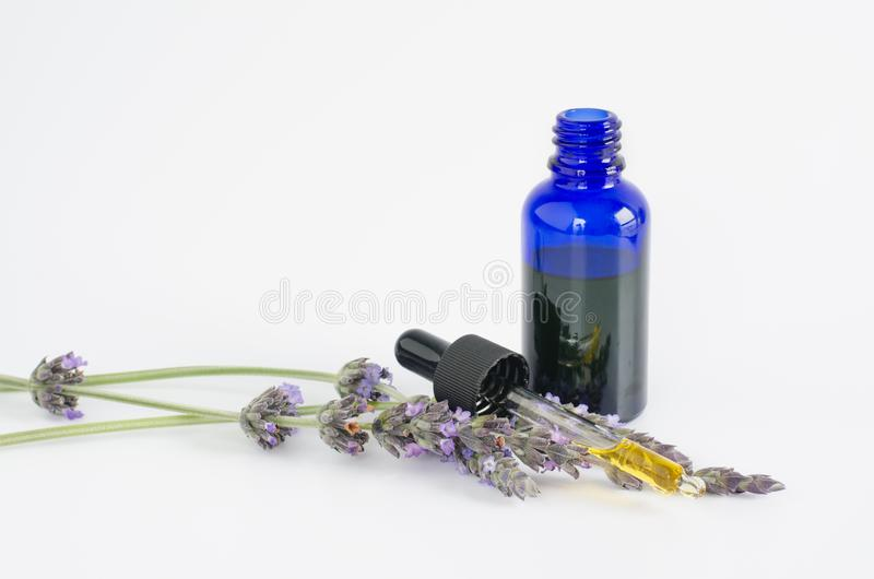 Wesentliches Schmieröl des Lavendels Blumen und Flasche mit Pipette auf weißem Hintergrund stockfotografie