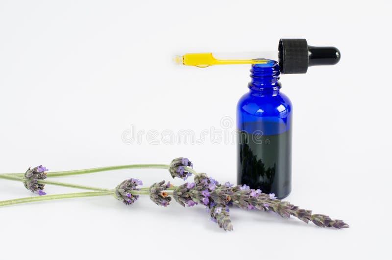 Wesentliches Schmieröl des Lavendels Blumen und Flasche mit Pipette auf weißem Hintergrund stockfotos