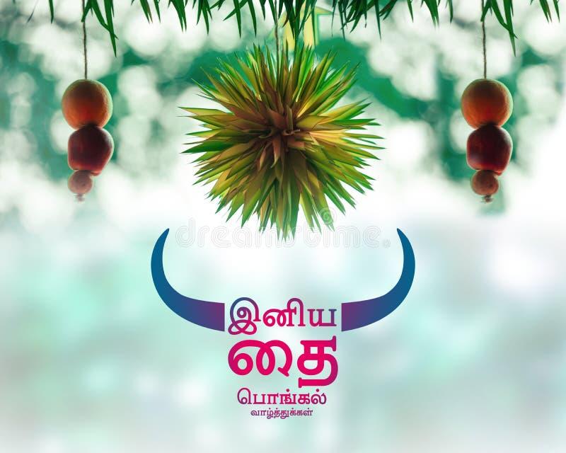 Wesołe życzenia gąbczaste w tamilu zdjęcia royalty free