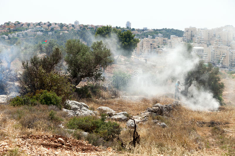 West Bank Settlements And Fire In A Palestinian Field Editorial Stock Image
